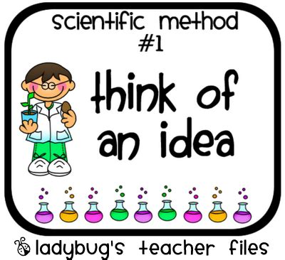 Writing an introduction to a scientific report
